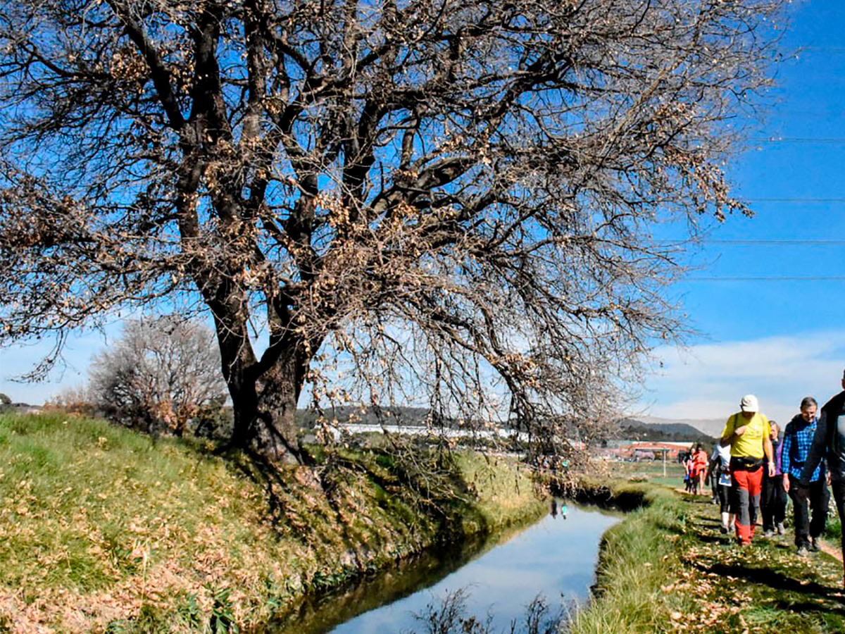 Transèquia, una ruta perfecta per a gaudir